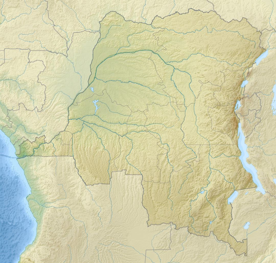 Detailed relief map of Congo Democratic Republic