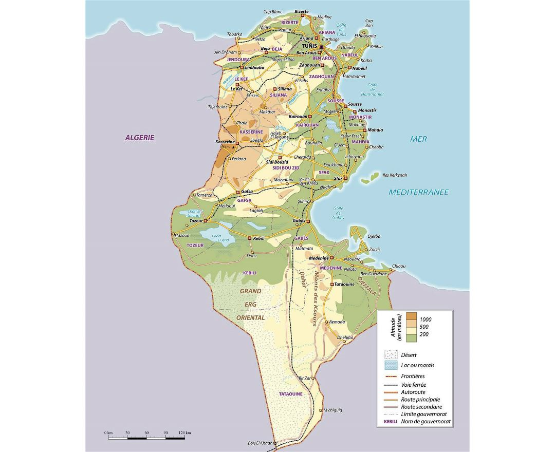 Large physical map of Tunisia