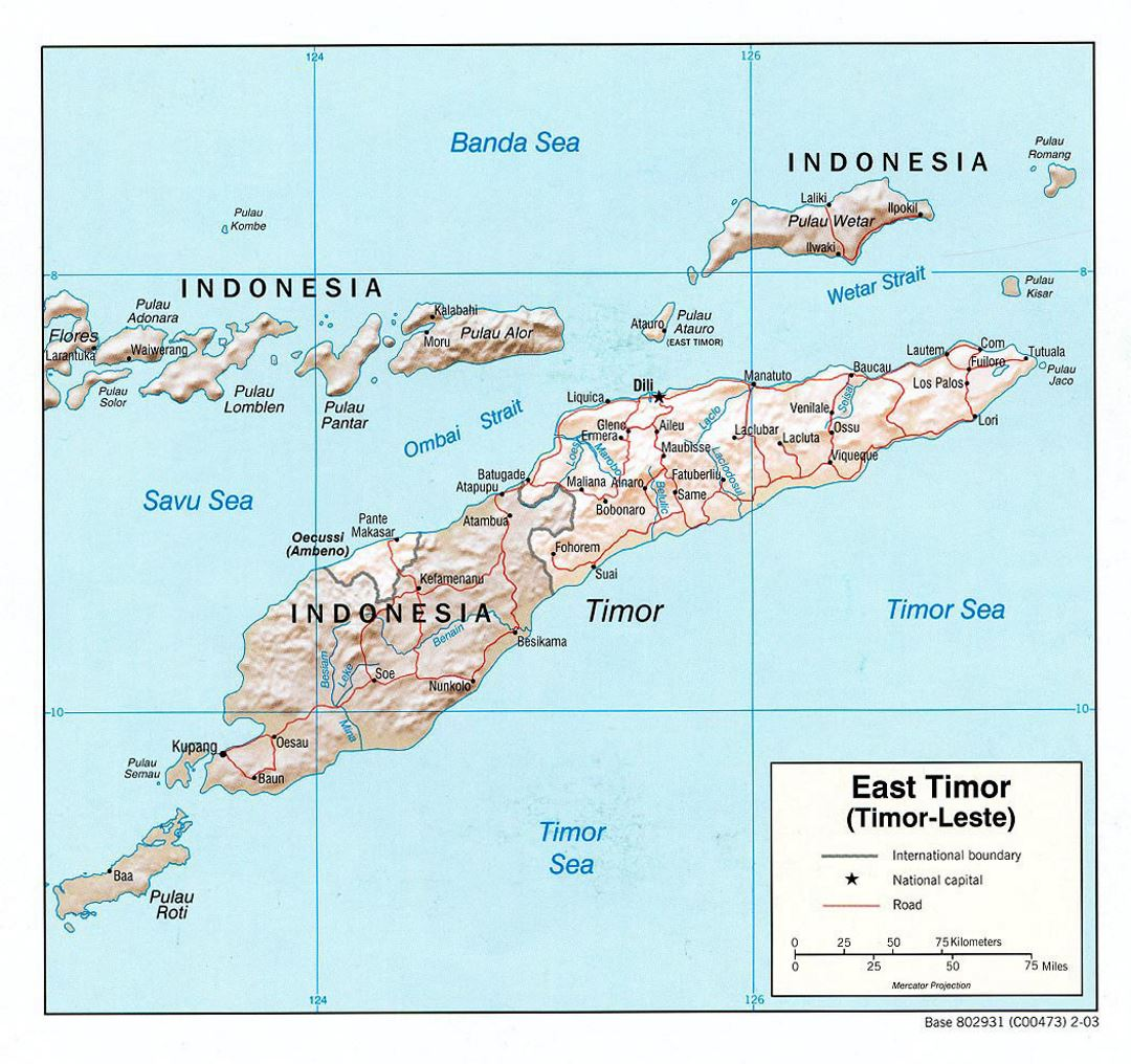 Detailed political map of East Timor with relief, roads and major cities - 2003