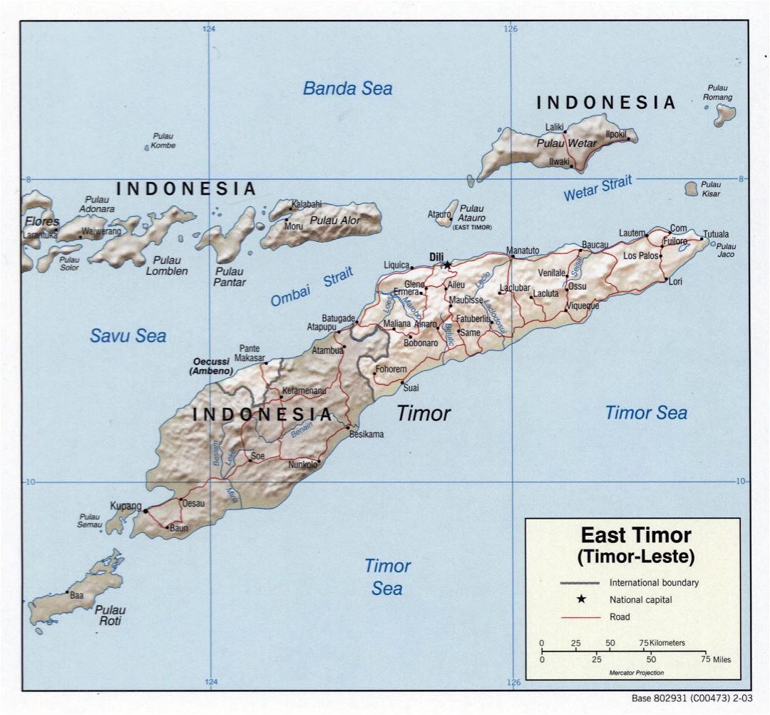 Large detailed political map of East Timor with relief, roads and major cities - 2003