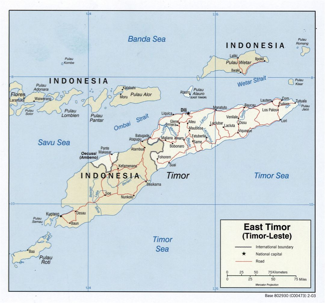 Large detailed political map of East Timor with roads and major cities - 2003