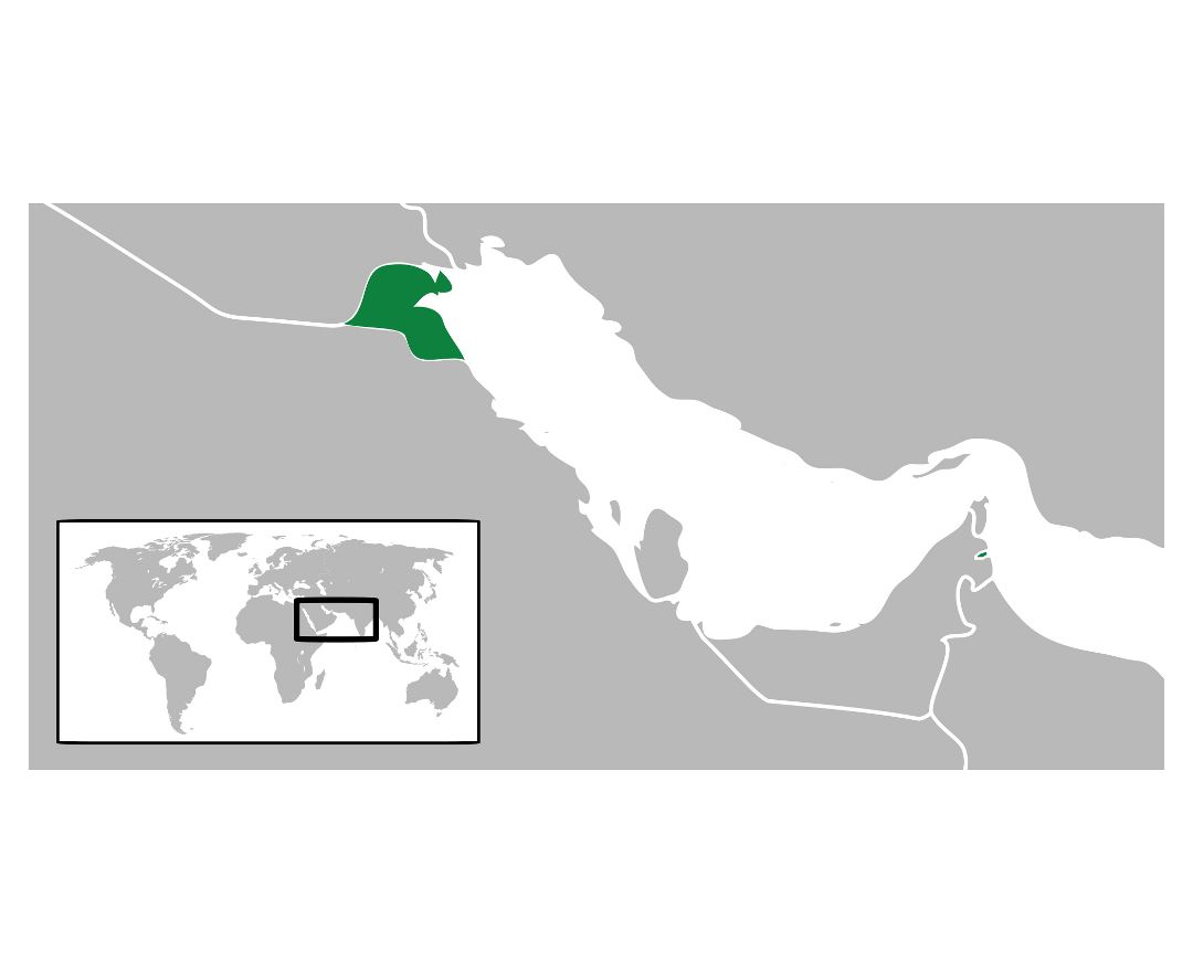 Large location map of Kuwait