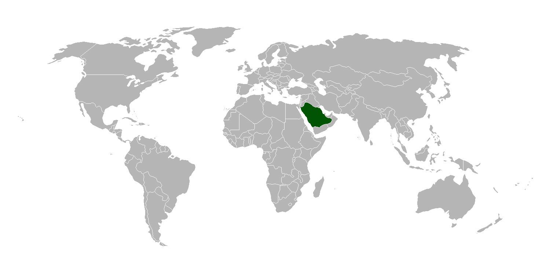 Detailed location map of Saudi Arabia | Saudi Arabia | Asia ...