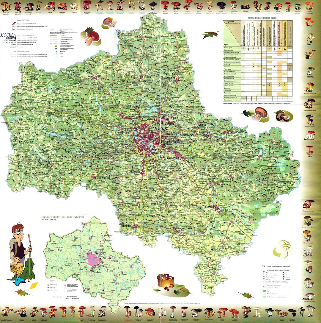 Large detiled mushroom map of Moscow region in russian