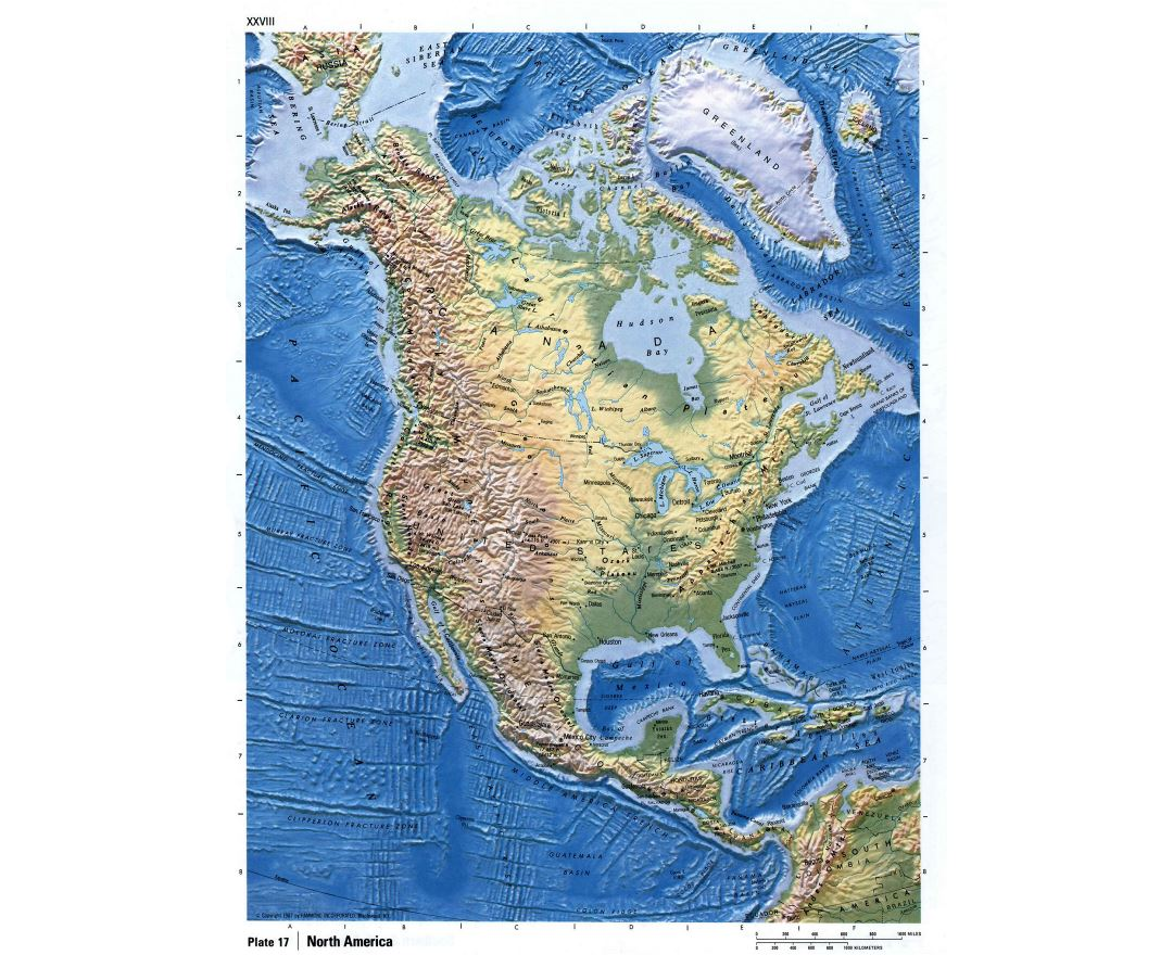 Maps of north america and north american countries political maps detailed relief map of north america publicscrutiny Gallery