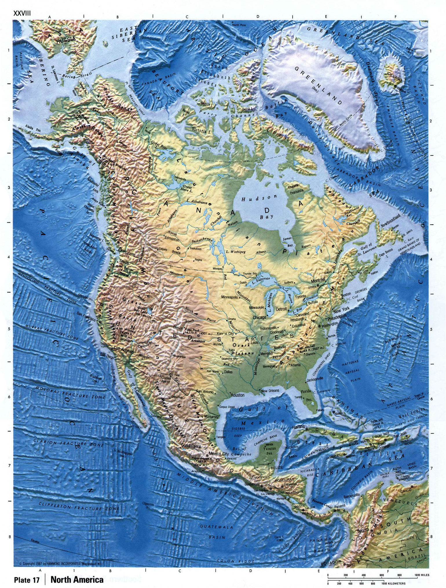 Detailed Relief Map Of North America