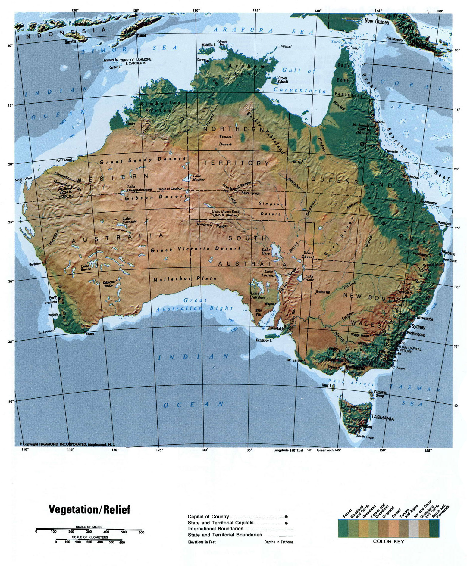 detailed relief map of australia