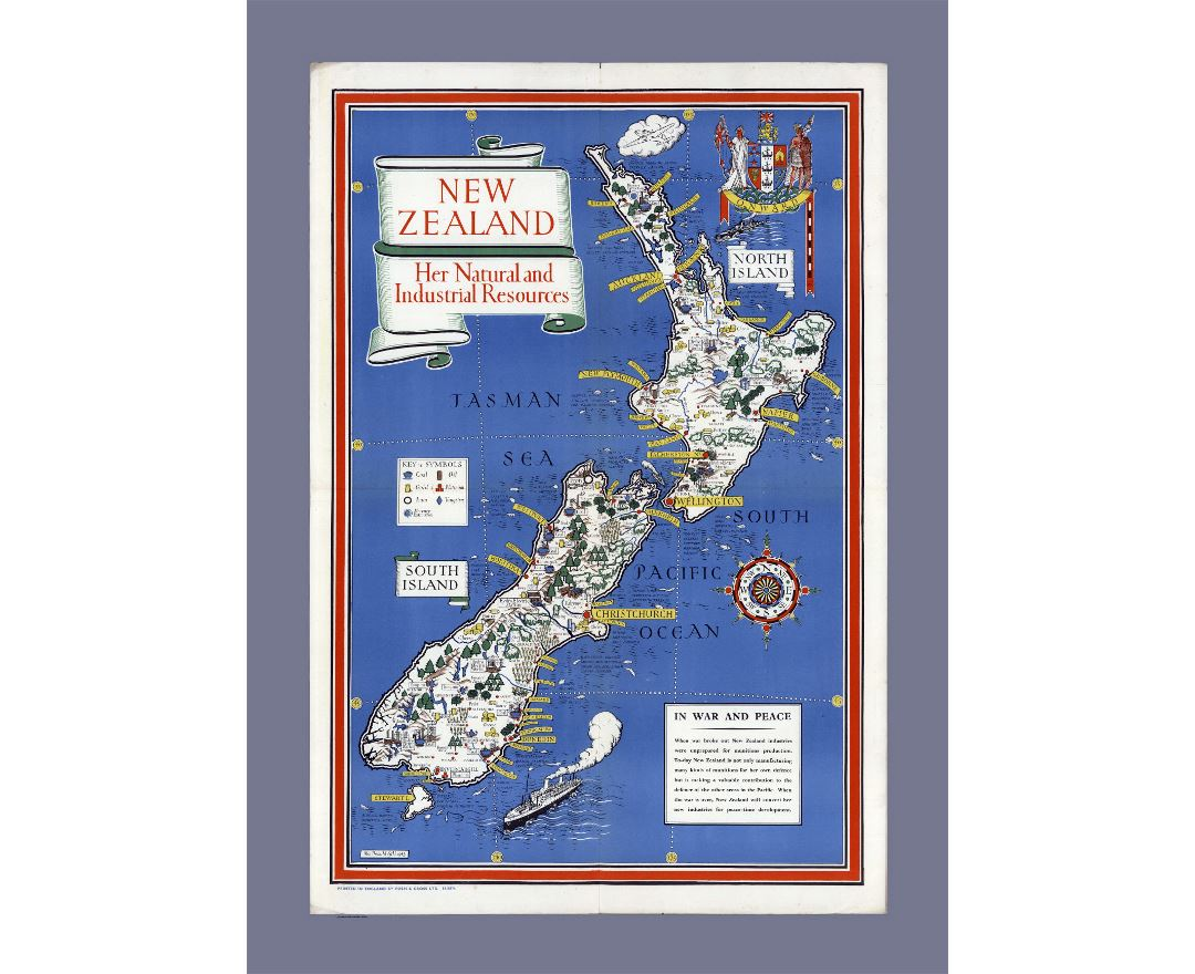 Detailed natural and industrial resources illustrated map of New Zealand
