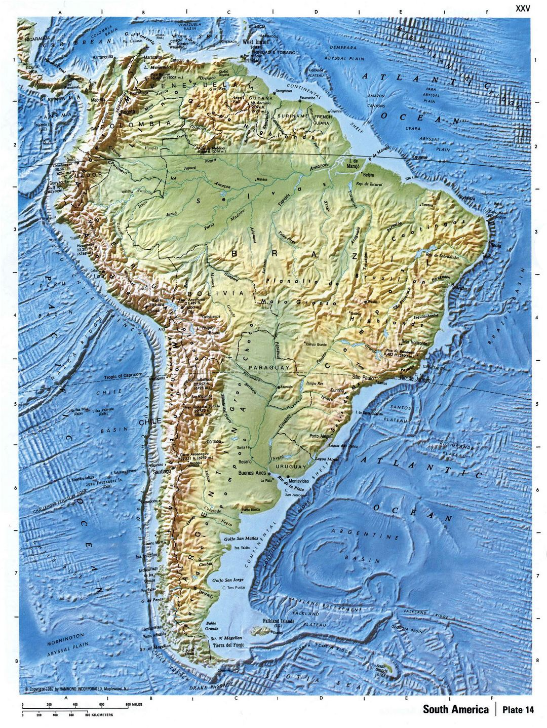 Detailed relief map of South America